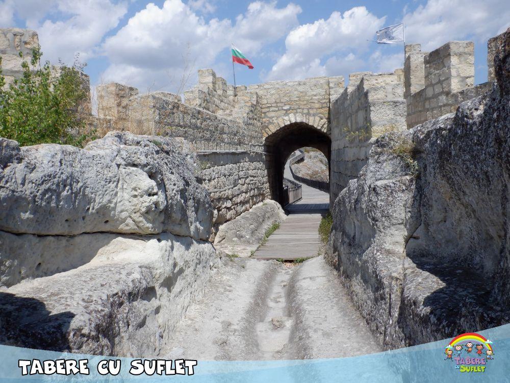 Cetatea Vulturilor