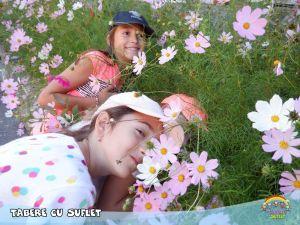 Flori, Fete si Caluti